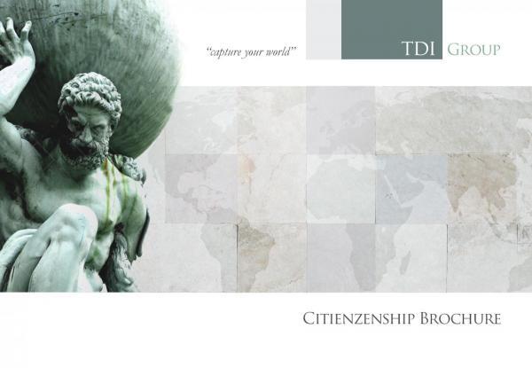 TDI Group